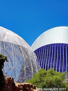 Aviario en primer plano. La impresionante cúpula intercede con el edificio de Oceanografic.  Aviary in the foreground. The impressive dome intercedes with the Oceanografic building.