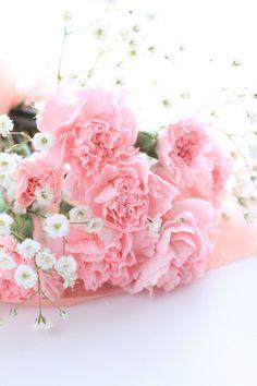 5 flores para um ramo de verão: http://www.casamentos.pt/artigos/5-flores-para-um-ramo-de-verao--c4386