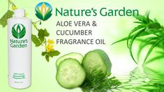 Aloe Vera & Cucumber Fragrance Oil - Nature's Garden