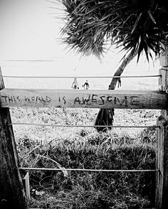 I'm not condoning graffiti but this one is actually on the money. #monday #mondaymotivation #awesome #beach #befree #beachlife #capture #currumbin #currumbinbeach #daily #dailyroutine #explore #enjoylife #earlystarts #goldcoast #goodmorning #getoutside #getoutside #earlymorning #sign #signs #exercise #healthyliving #sea #lovelife #livelife #workrestplay #liveyourlife by chasinrainbowz http://ift.tt/1X9mXhV