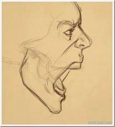 Köpfe zeichnen  Der Schrei