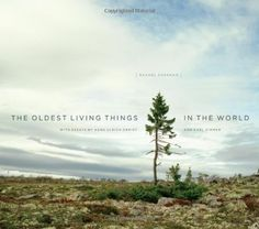 Oldest Living Things in the World