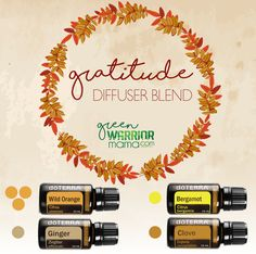 Gratitude Diffuser Blend  doTERRA essential oils for your diffuser: 3 drops Wild Orange, 1 drop Bergamot, 1 drop Clove, 1 drop Ginger. Diffuse to inspire gratitude and remember what's important in life and give thanks.  http://www.greenwarriormama.com
