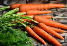 How to Store Carrots for Winter. Store Carrots in your Refrigerator. Super simple way to have garden fresh carrots all winter long! Vegetable Nutrition, Diet And Nutrition, Nutrition Classes, How To Store Carrots, Glazed Baby Carrots, Diabetic Recipes, Healthy Recipes, Growing Carrots, Eating Carrots