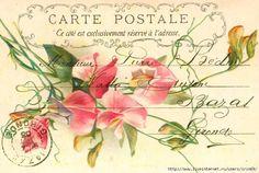 Imprimolandia ~ Vintage floral postcard
