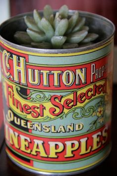 """There are four labels available in this unique collection of Australian Canning Label reproductions made from copies of the originals used at my Great-great-grandfather's Cannery on """"Bramble Farm"""" in Nudgee, Queensland, Australia in the early 1900s.  Three (3) of the labels are from his cannery in QLD, and one (1) is from Huon River, Tasmania.   $9.90"""