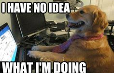 Trying to fill out your bracket like...#march #madness