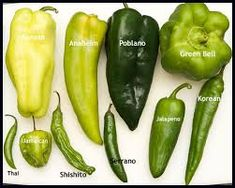 Things are heating up at Mommie Cooks! Today we're going to talk chile peppers. I know, yum, right? I don't know about you, but chile peppers have always Pepper Chart, Types Of Peppers, Growing Peppers, Catering, Chili Sauce, Hot Sauce, Salsa Picante, Olive Oil Cake, Food Facts