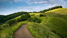 Path on grassy hills