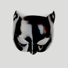we are made of stardust Batwoman, Nightwing, Batgirl, I Am Batman, Darkness Falls, Leather Mask, Animal Masks, Bat Family, Gotham City