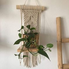 News Plant Hanger, Macrame, News, Design, Home Decor, Water Tap, Decoration Home, Room Decor, Interior Design