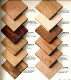 Identify Type Of Wood Google Search Wood Shop In 2019 Wood