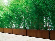Bloembak Bambu Corten