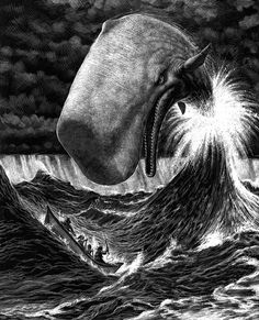 Piccsy :: Beautiful Scratchboard Illustrations by Ricardo Martinez: Moby Dick Art And Illustration, Animal Illustrations, Art Scratchboard, Scratch Art, Wow Art, Norman Rockwell, Rockwell Kent, Art Graphique, Animal Drawings