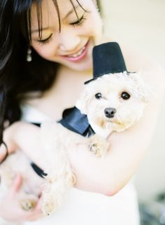 Dogs in weddings  {Photo by Jen Huang via Project Wedding}