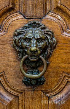 Bern Old Town Lion Door Knocker - Switzerland