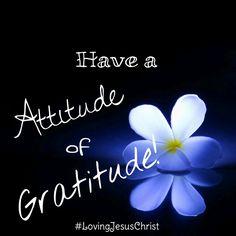 Have a attitude of gratitude! #LiefdevirJesusChristus