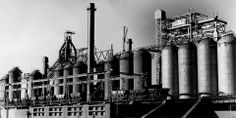 The industrial society led to the urbanization of more and more areas, so people were closer to centers of mass production. Sociology, Science And Technology, Industrial, World, Life, Culture, Google Search, People, The World