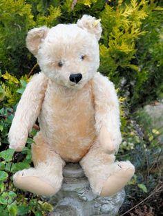 "'Tomas' 20"" large old Steiff bear with button. www.oldteddybearshop.co.uk Teddy Hermann, Antique Teddy Bears, Steiff Teddy Bear, Charlie Bears, Love Bear, Kindred Spirits, Bear Doll, Antique Toys, Plush"