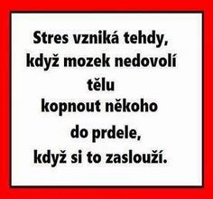 Vtipné texty (strana - Co se jinam nehodí - Diskuze The Words, Jokes Quotes, Funny Quotes, My Life Quotes, Motivational Speeches, Motto, Monday Motivation, Funny Texts, Quotations