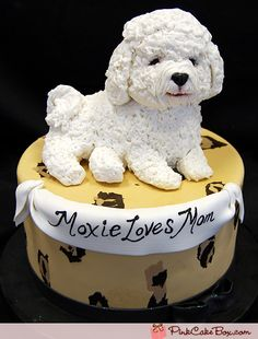 Bichon Frise Dog Cake