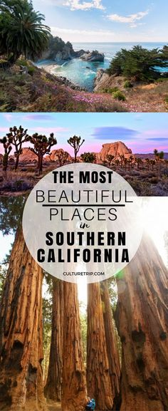 The Most Beautiful Places In Southern California : California travel From incredible National Parks to sweeping wildflower fields, read on to get to know some of the most gorgeous spots around California. California Travel Guide, California Vacation, Visit California, Vintage California, Hikes In Southern California, California Living, Beautiful Places In California, California Destinations, California Fashion