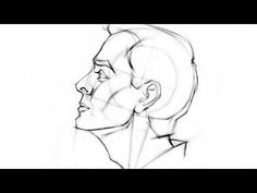 How to Draw the Head – Side View by Stan Prokopenko*  • Blog/Website | (http://www.proko.com) • Online Store | (http://www.proko.com/store-drawing-and-painting-resources)  ★ || CHARACTER DESIGN REFERENCES (https://www.facebook.com/CharacterDesignReferences & https://www.pinterest.com/characterdesigh) • Love Character Design? Join the #CDChallenge (link→ https://www.facebook.com/groups/CharacterDesignChallenge) Promote your art in a community of over 30.000 artists! || ★