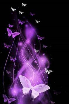 Purple & White Butterflies