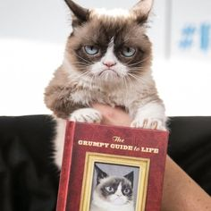 The Grumpy Guide to Life Book