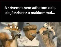 Me Too Meme, Funny Pins, Funny Animals, Funny Jokes, Haha, Cute, Hungary, Illustrations, Cartoon
