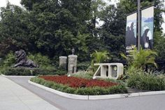 National Zoo Logical Park United States - Best Zoos To Visit From All Over The World