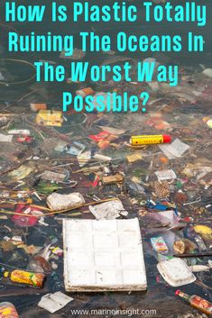 Want to know how plastic is ruining the oceans and marine life in a number of ways? Plastic has come to be looked upon as a material of immense potential destruction and harm. Plastic In The Sea, No Plastic, Ocean Pollution, Plastic Pollution, Garbage In The Ocean, Types Of Ocean, United Nations Environment Programme, Marine Debris, Marine Ecosystem