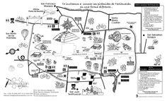 GUÍA DE VIAJE TEOTIHUACAN - Teotihuacan en Bicicleta...