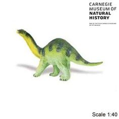 Carnegie Collectible Apatsaurus Baby Dinosaur Toy Model $7.99 in stock & ships same day! Shop www.DinosaurToysSuperstore.com