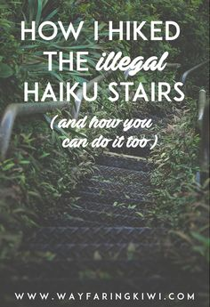 Are you looking for an adventure? Are you an adrenaline junkie? Then the Stairway To Heaven hike in Hawaii may just be for...
