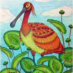 By @anadircegcinti #arttherapy #mandala #milliemarottafans #coloringbook…