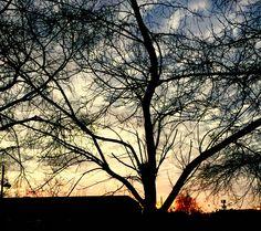 Sunrise #chichester