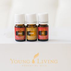 """The three most underrated oils in the Premium Starter Kit ... Let's break it down a little bit and show some love ❤️⠀ ⠀ Digize. This oil is your tummy's best friend!! It supports a healthy digestives system, helps alleviate nausea and upset stomach, can offer relief from occasional heartburn and alleviates fullness/bloating. Go ahead and indulge in that Halloween candy this year ⠀ ⠀ Copaiba. This oil is considered a """"driving oil"""",  enhancing anything it's added to! It helps our bodies..."""