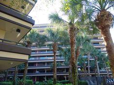 Rosen Inn at Pointe Orlando- Hotel com ótimo preço e localização | Disney de Novo International Drive, Sea World, Universal Studios, Walt Disney World, Birds, Outdoor Decor, Bird
