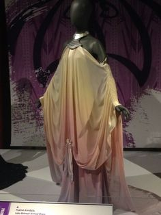 padme lake gown