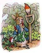 Rabbit Beatrix Potter - Peter Rabbit love the way this story is worded.Beatrix Potter - Peter Rabbit love the way this story is worded. Art And Illustration, Rabbit Illustration, Beatrix Potter Illustrations, Book Illustrations, Lapin Art, Beatrice Potter, Rabbit Photos, Peter Rabbit Pictures, Peter Rabbit And Friends