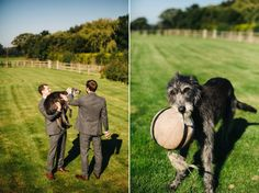 Pet dog at a rustic, homespun Autumn barn wedding  | Photography by http://www.richardskinsphotography.co.uk/