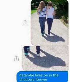 Harambe Got Sent To The Shadow Realm http://ibeebz.com