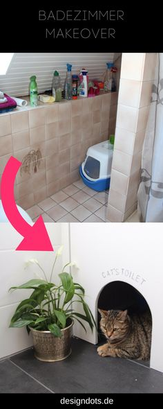Glaskabine für die Dusche, Duschkabine mit zwei Duschen an der - pflanzen für badezimmer