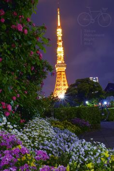 - Tokyo Monuments and Night Ride Tokyo Skytree, Tokyo Night, Tokyo Tower, Hydrangea, Cities, Japan, Building, Flowers, Travel