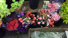 My favorite part of my morning is when I select the flowers for Sinister Stories of Salem in the evening. Beverly Massachusetts, My Favorite Part, My Favorite Things, Florists, Walking Tour, Flowers, Florals, Flower Shops, Flower