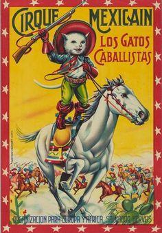 Los gatos caballistas del circo mejicano