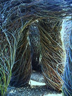 Patrick Doughtery twig sculpture.
