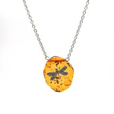 5 Day Sale NEW Dragonfly Amber Stainless Pendant Necklace (SSNK133)
