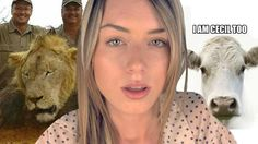 The TRUTH About Cecil The Lion & Trophy Hunting